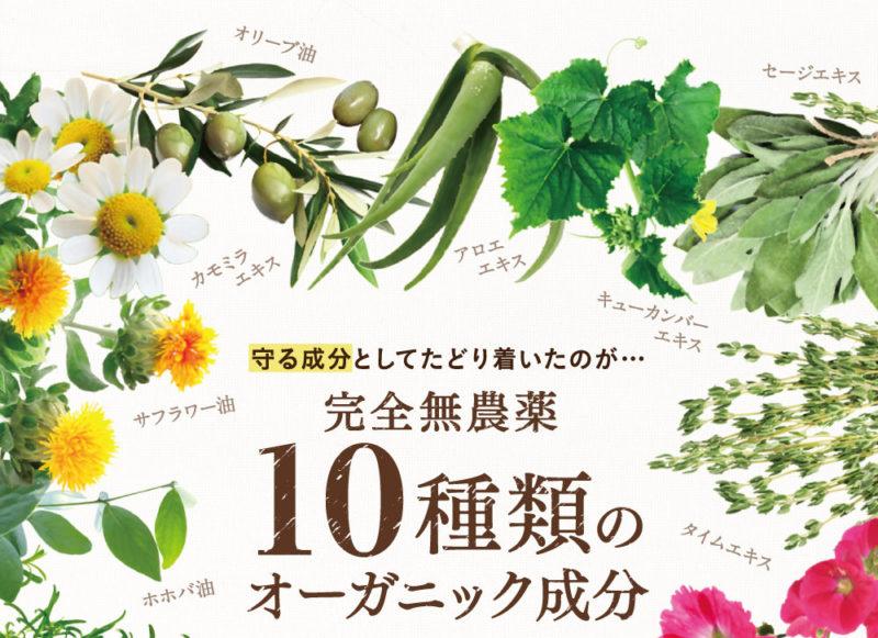 -2017-05-22-14-47-16-800x581 - image