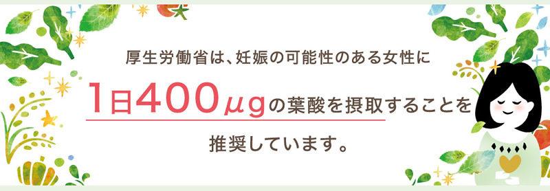 hikaku05-800x278 - image