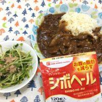 0922-ハヤシライス、豆苗とツナのサラダ