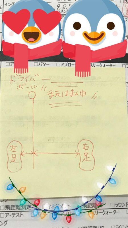 -2017-12-18-14-25-04-450x800 - image